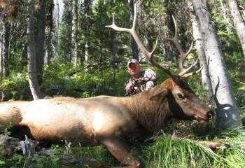Archery Elk Hunts Montana (6)