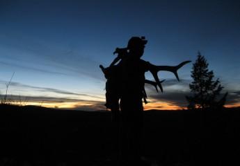 Elk hunting montana 13 (5)