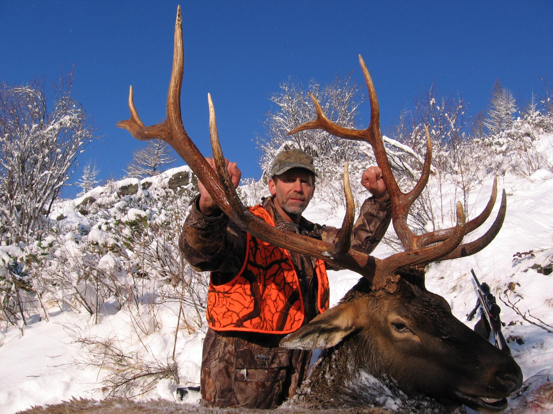 Elk hunts with Cody Carr