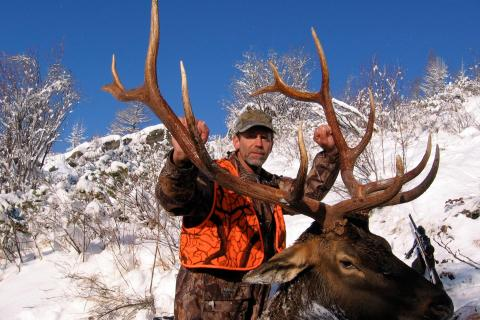 Elk Hunts 2006 & before