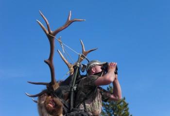 Hunting camp Portfolio set (6)