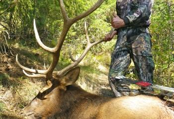 elk hunting montana trips 2011 N (19)