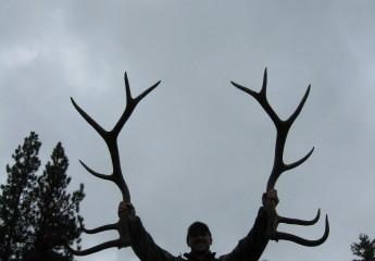 elk hunting trips montana 2010 (5)