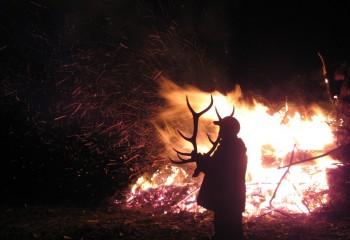 elk hunts montana 2012 (11)