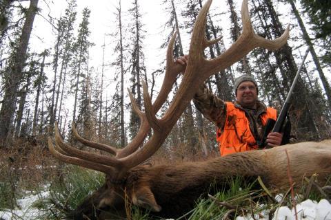 Elk Hunting Trips 2009
