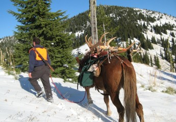 elk hunts with Cody Carr 2009 (9)