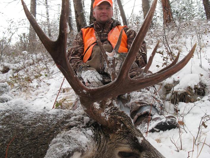 mule deer hunting trips