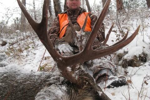 Mule Deer Hunts 2011