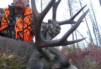 mule deer hunts 13 (2)