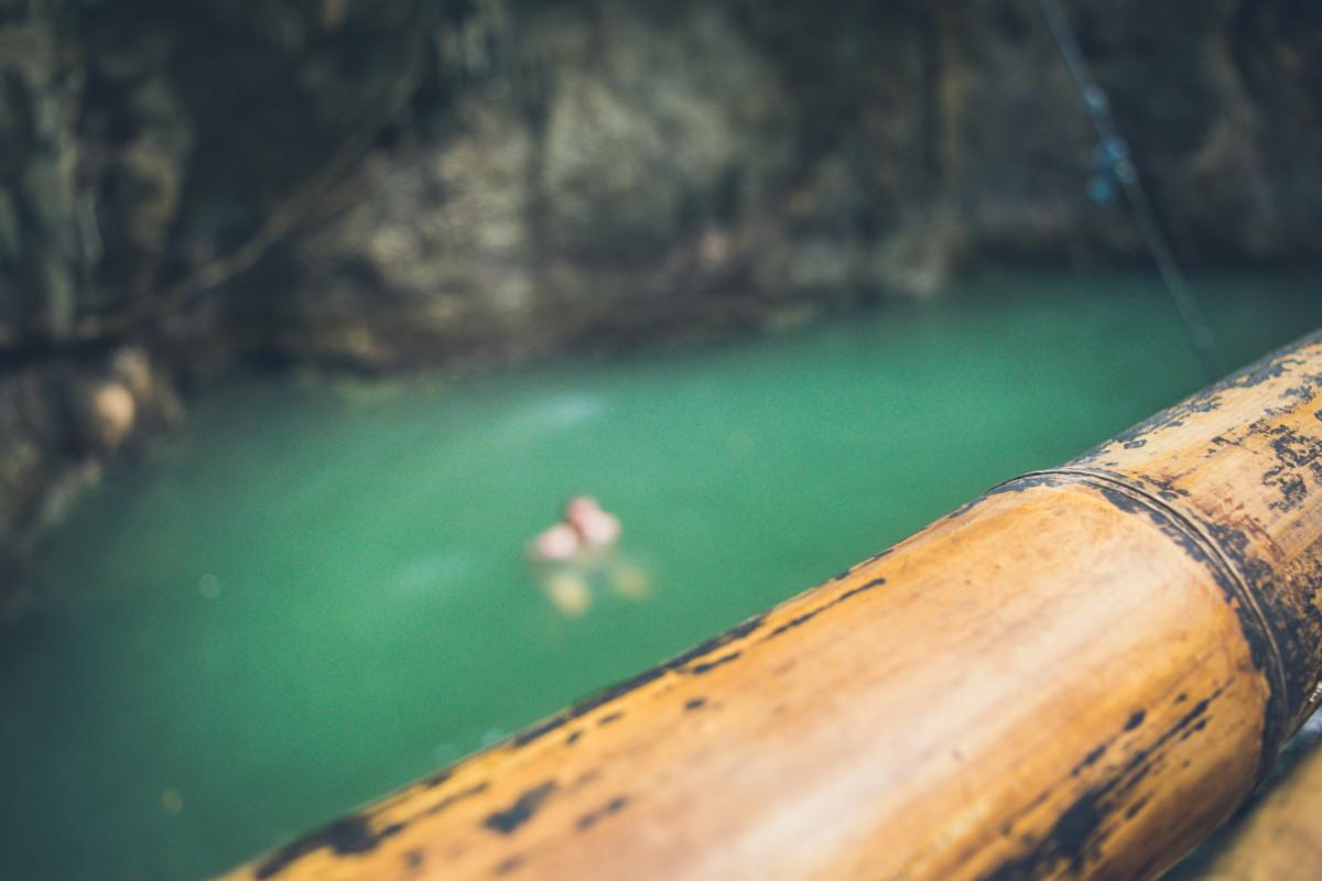 Do Jamy sa skakalo z bambusového oplotenia