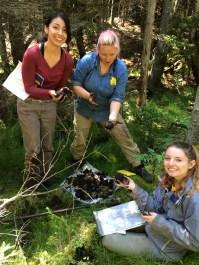 Summer 2016 REU Hydropedology Crew at Hubbard Brook