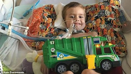 'We had no idea what was happening and neither did the doctors,' Alex's mom Katie told Dailymail.com. Alex is pictured above