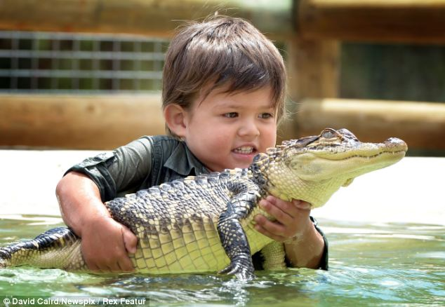 Gotcha! Charlie, cradling the North American alligator, comes from a long line of animal carers who own and run the Ballarat Wildlife Park