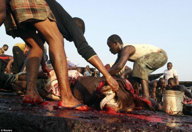 Butchers work in an abattoir near the Swali market in Yenagoa, in Nigeria's oil state of Bayelsa