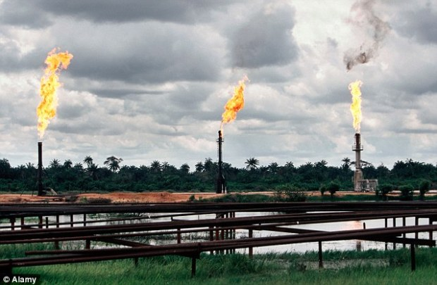 The oil industry is highly corrupt, with 136 million barrels of crude oil worth $11¿billion (£7.79 billion) were illegally siphoned off in just two years from 2009 to 2011
