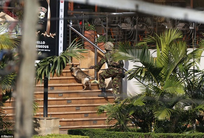 A Kenyan soldier holding a dog by its leash enters the main gate of Westgate Shopping Center as the military tried to overpower the terrorists on Sunday