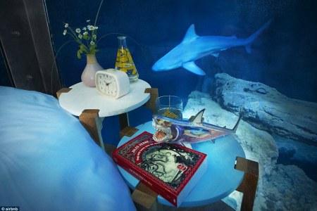 pics photos shark themed bedroom