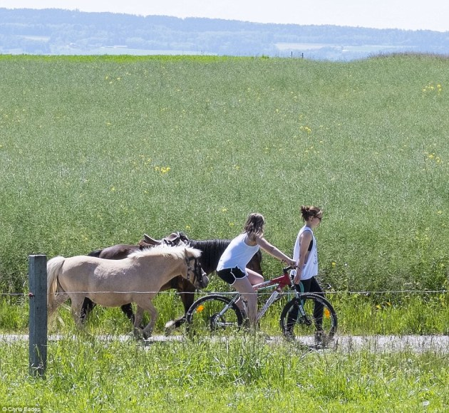 Picturesque:Surrounded by lush green pastures and with stunning views of the snow-capped Alps in the distance, the twin villages of Oberwil and Lieli would not look out of place on the front of a box of chocolates