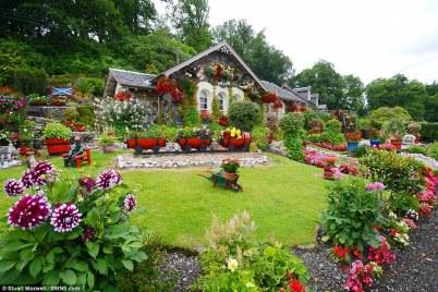 DealDash Tips Garden