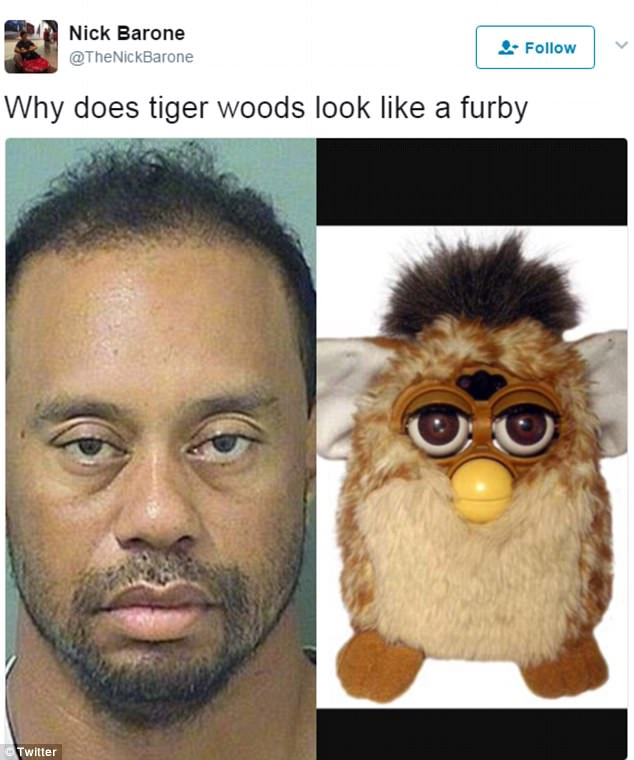 Tiger Woods  mugshot gets the meme treatment   Daily Mail Online Uncanny resemblance  One poster on Twitter compared Woods to the famous  noughties robot