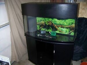 Details about 72 Gallon Bow Front Fish Tank Aquarium Reef Ready 46 55