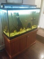 120 gallon tall aquarium fish tank | accessories | Kingston | Kijiji