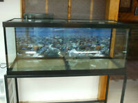 aquarium fish tank 75 gallon fish tank 4 feet long