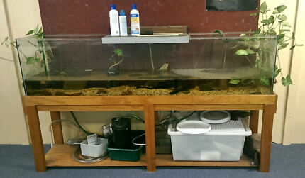 Fish Tank   6 ft   Full setup with stand Neutral Bay North Sydney Area