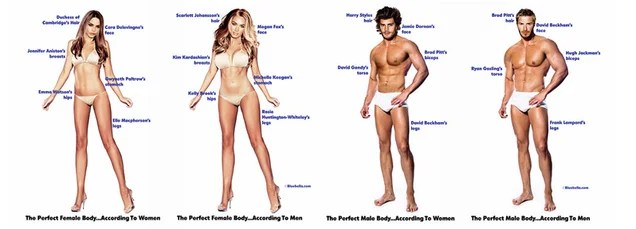 Here is the perfect male and female body according to male and females