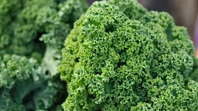 5 Stubborn Food Myths That Just Won't Die, Debunked by Science