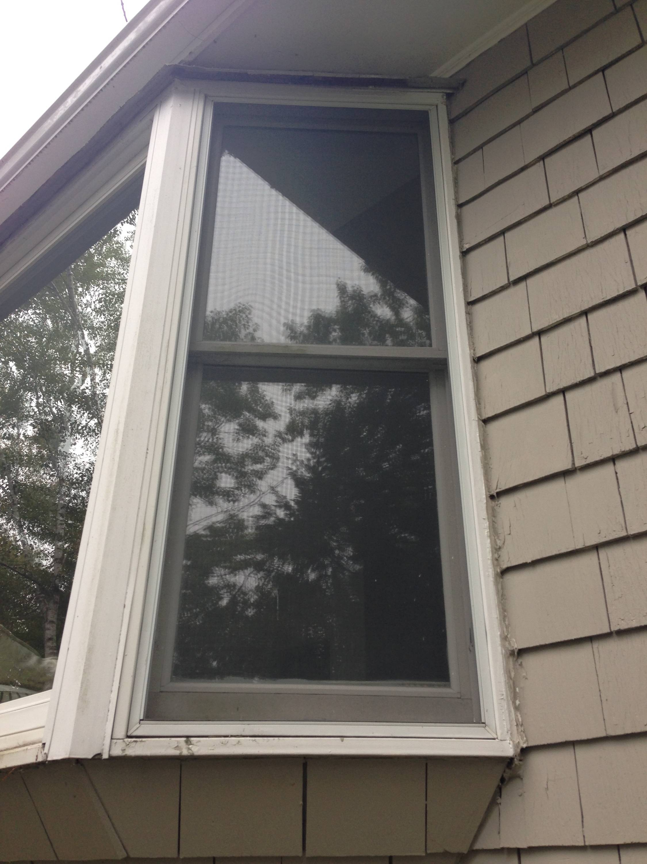 Fullsize Of Larson Storm Windows