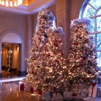 Download Lagu O Christmas Tree Demo Mp3