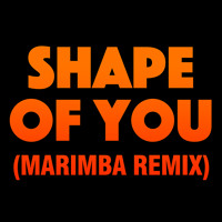 Download Lagu Shape Of You (Marimba Remix) *FREE * Mp3
