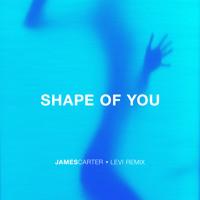 Download Lagu Ed Sheeran - Shape Of You (James Carter x Levi Remix) Mp3