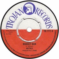 Monkey Man - (Toots and the Maytals, The Specials, Amy Winehouse) - Cover Mp3