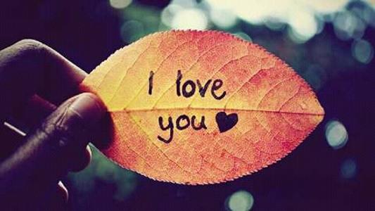 ♫ OH MY DARLING I LOVE U ! [RyanYogiPratama & MhdDino]#Req CintaAulya Mp3