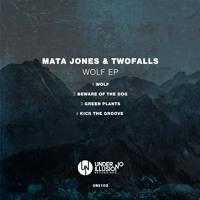 Mata Jones&Twofalls  - 狼Mp3