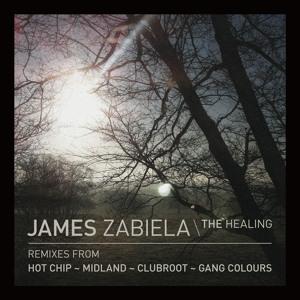 The Healing (Hot Chip Remix) Mp3