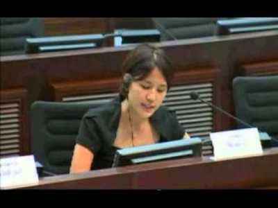 Lion Rock - LegCo Panel on Transport 2013-07-19