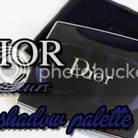 Dior 5 couleurs eyeshadow Stylish Move