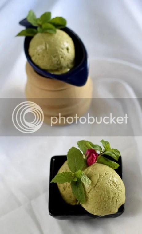 Kiwi & Mint Ice Cream (without heavy cream) 2