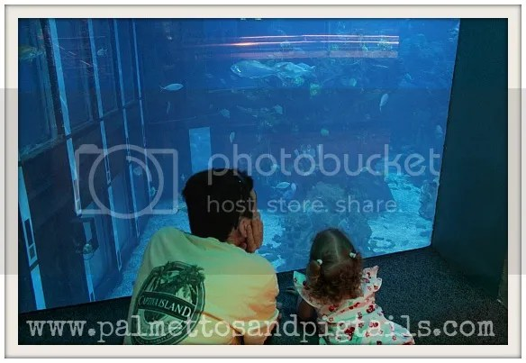 Aquarium by the Finding Nemo Ride at Epcot at Disney World