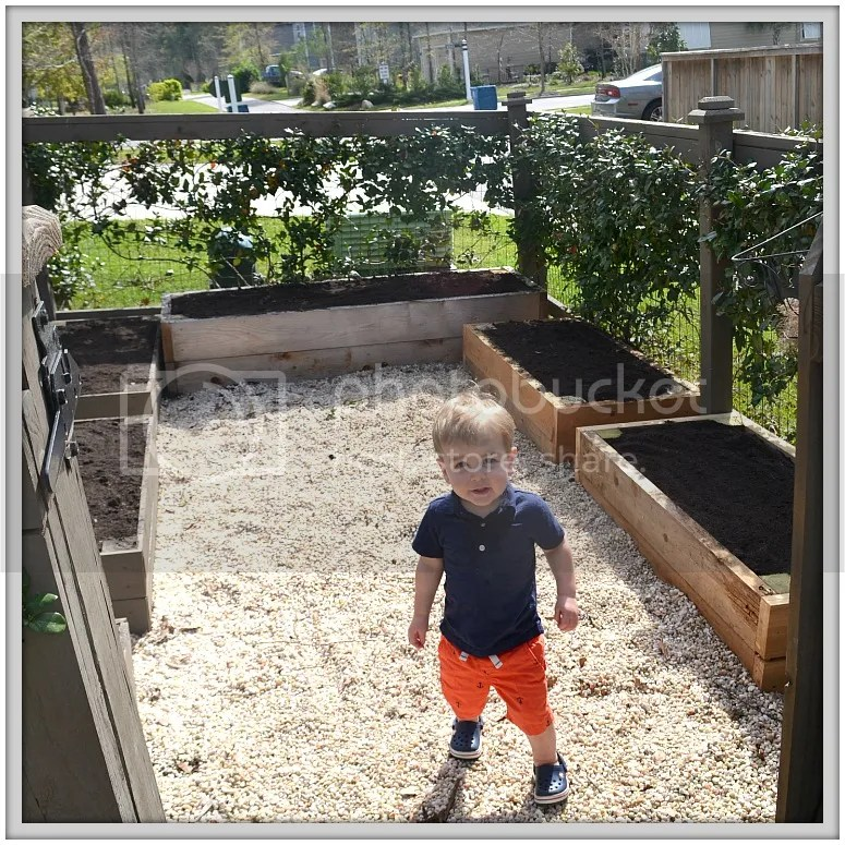 A Garden Story: How #RitasRoots brought our #garden back to life, and the mistakes we made! #greenthumb #veggiegarden