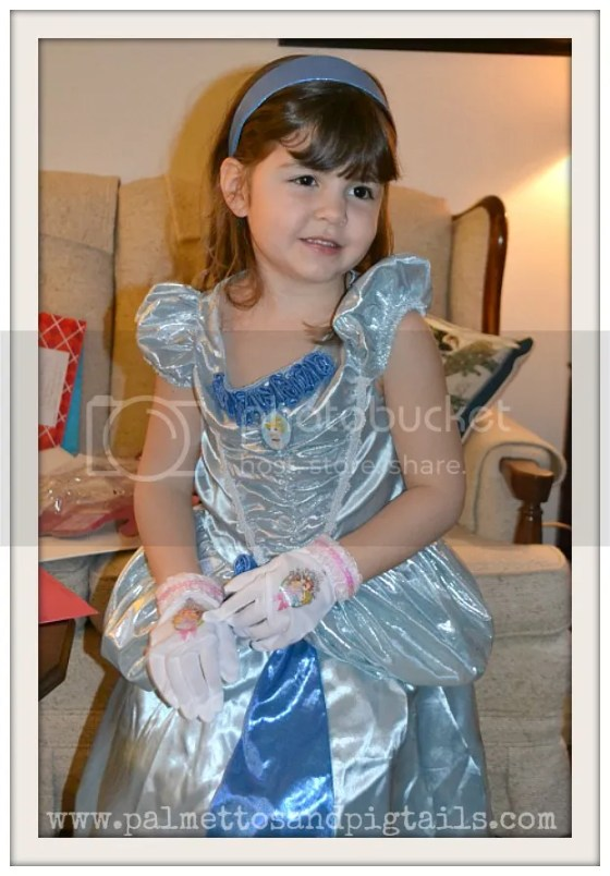 Disney Cinderella Dress Up