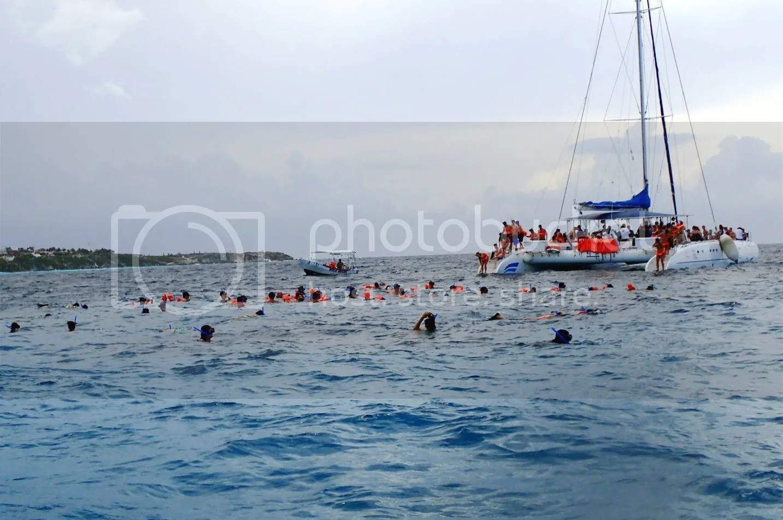 Crowds snorkeling