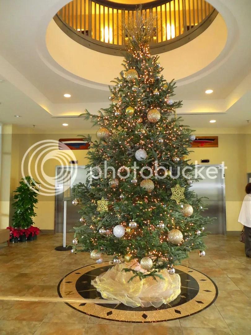 Christmas Tree at Southern