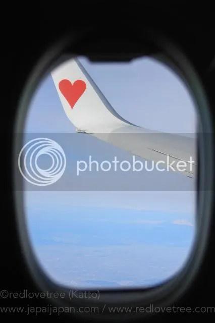 photo Airplane-3.jpg
