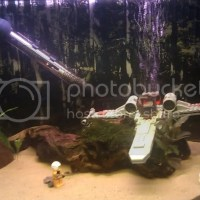 fish tank decorations star wars - star wars fish tank accessories |   Star Wars Aquariums