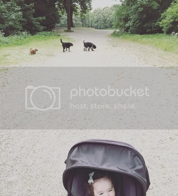 Plog: Hugo, Amsterdamse bos en in bad, juul, persoonlijk, mamablog, blogger, blog, lifestyle blog, foto blog, lief klein geluk, liefkleingeluk