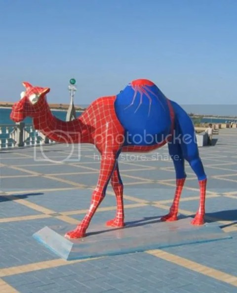 spider camel 